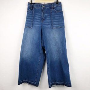 Kaari Blue Curvy Porkchop Pocket Crop Jeans Sz 10